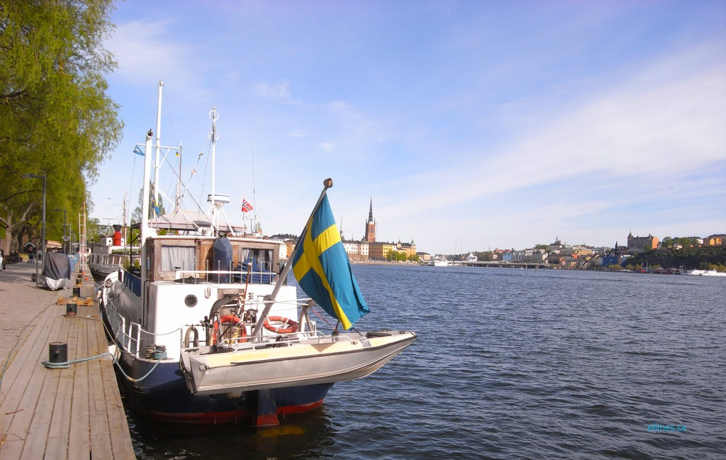 ellines_se _swedish national day