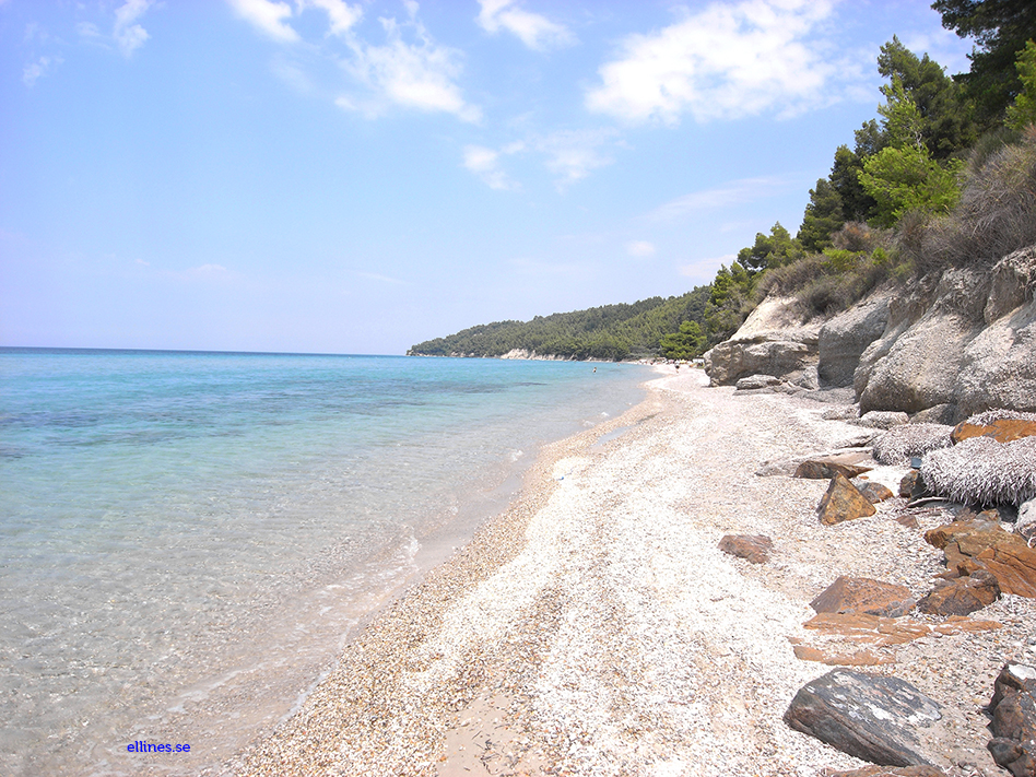 Fourka-Greece-Chalkidiki-Beach-Summer